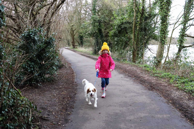 Dog Walk at Rickmansworth Aquadrome