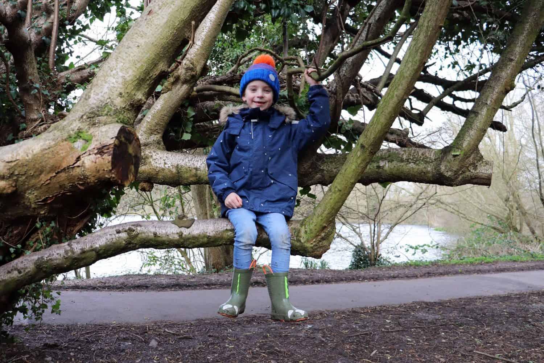 Climbing trees at Rickmansworth Aquadrome