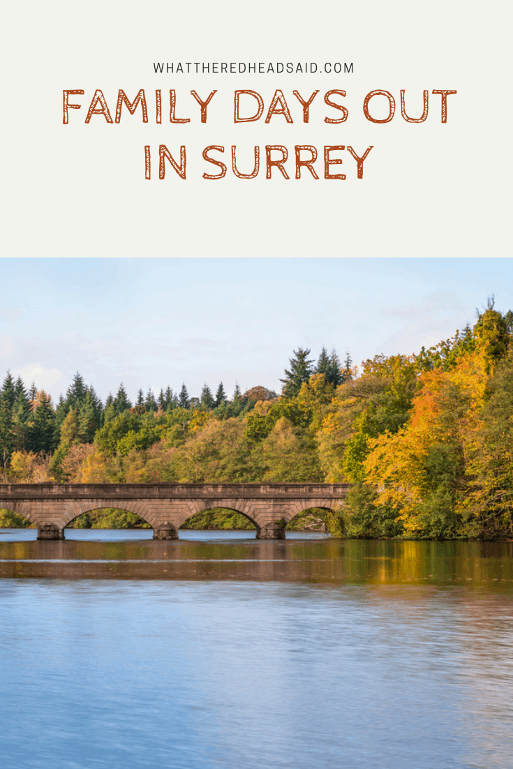 Our Favourite Days Out in Surrey