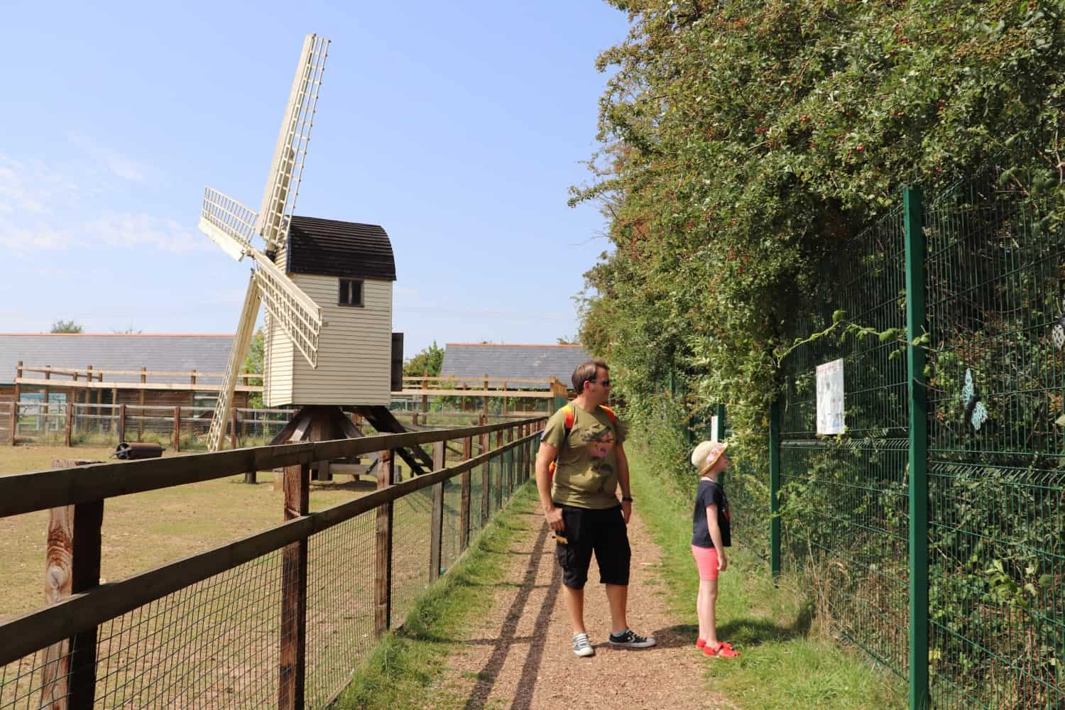 Our First Trip to Finkley Down Farm - Andover, Hampshire