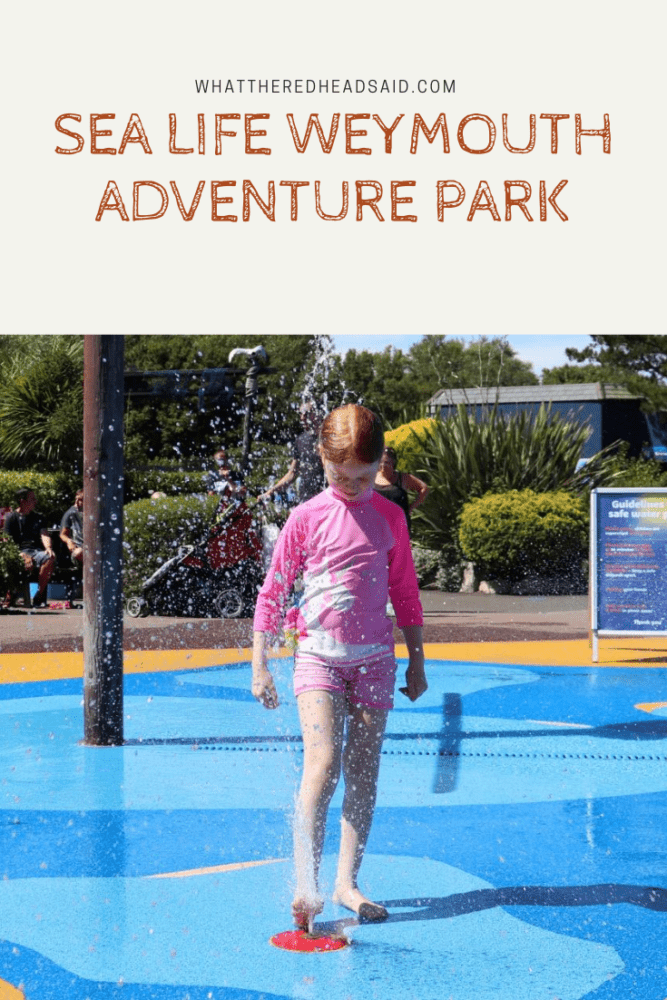 A Day at Sea Life Weymouth Adventure Park