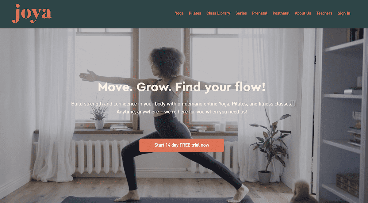 Learning Yoga at Home with Joya