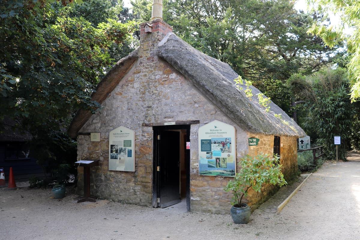 Abbotsbury Swannery - Dorset