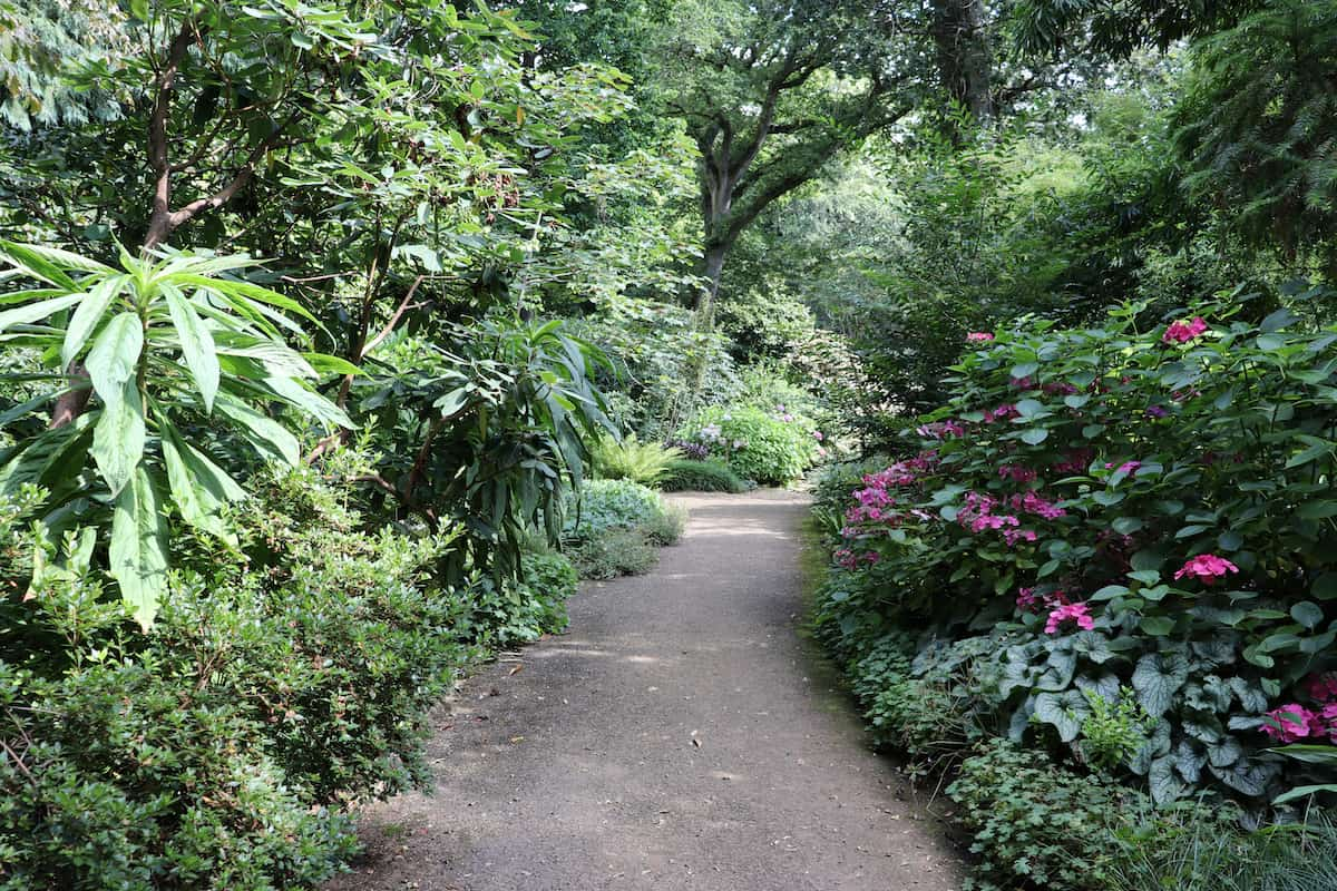 Abbotsbury Subtropical Gardens - Dorset